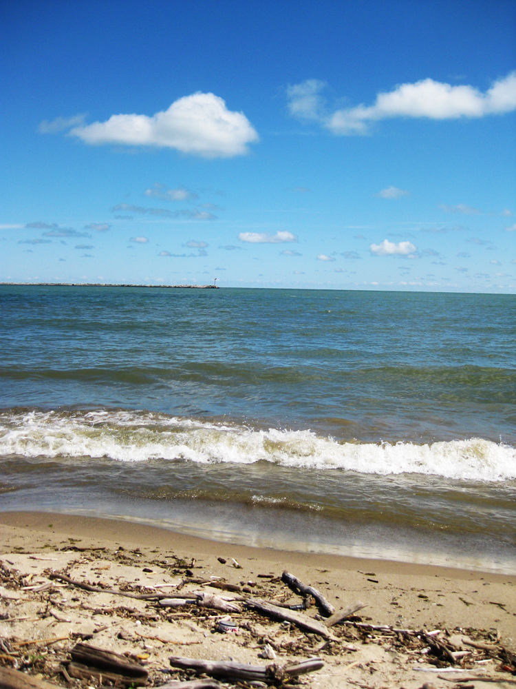 Lake erie central basin fishing reports download pdf for Lake erie western basin fishing report